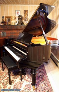 Used Ebony Otto Altenburg Grand Piano