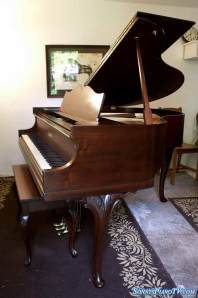 Winter Baby Grand Piano