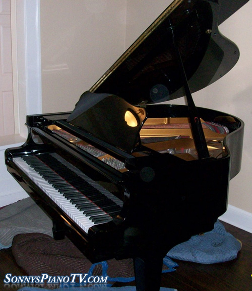 ebony gloss piano young chang baby grand 4 11 like new. Black Bedroom Furniture Sets. Home Design Ideas