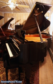 Player Piano Ebony