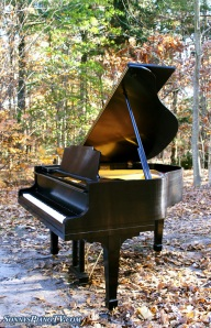Kawai Baby Grand Piano Ebony Rebuilt Amp Refinished In 1995