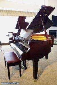 Baldwin Baby Grand Player Piano Like New See Video