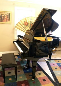 Player Piano Installation